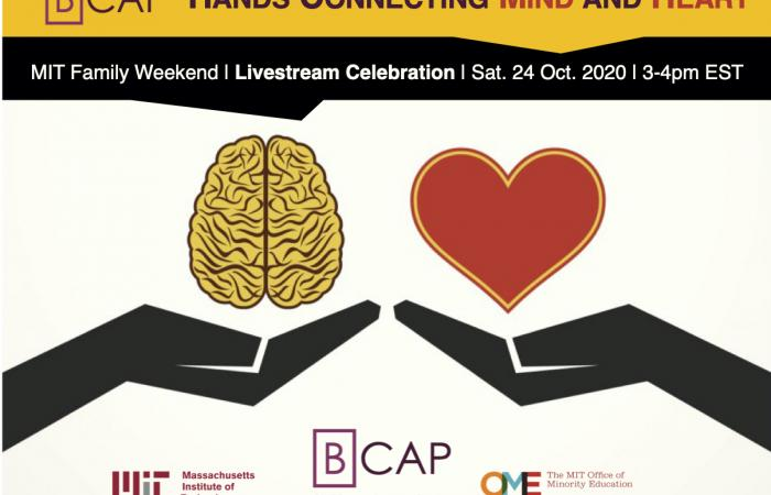 BCAP: Hands Connecting Mind and Heart (2020)