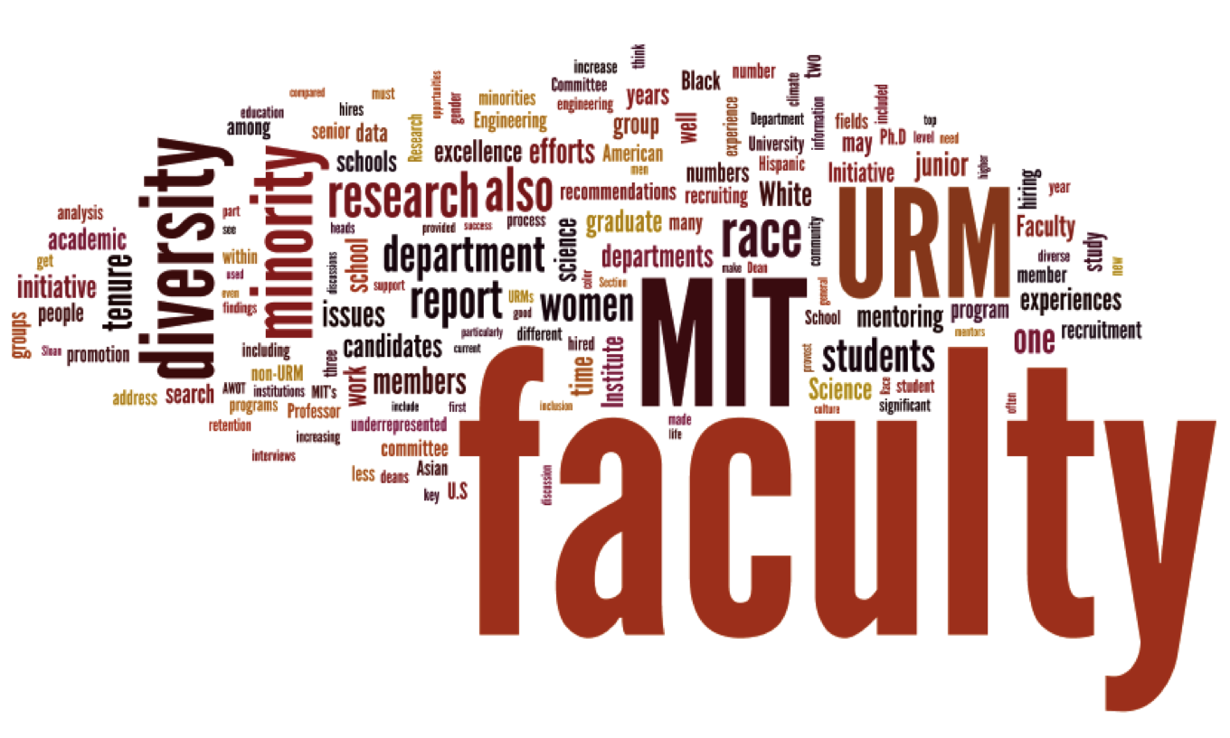 Faculty Diversity Report word cloud